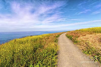 Photograph - California Coast -  Hiking Through Wildflowers by Dan Carmichael