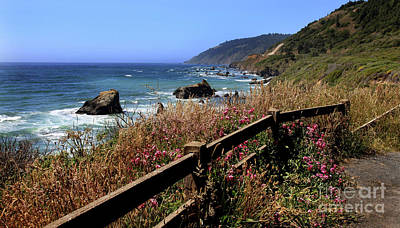 Photograph - California Coast by Joseph G Holland