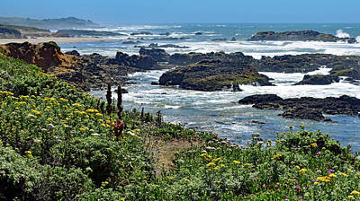 Photograph - California Coast No. 9-1 by Sandy Taylor