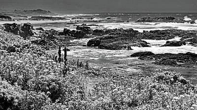 Photograph - California Coast No. 9-2 by Sandy Taylor
