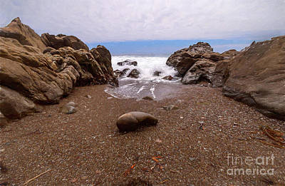 Photograph - California Coast -  Rising Tide Ap by Dan Carmichael