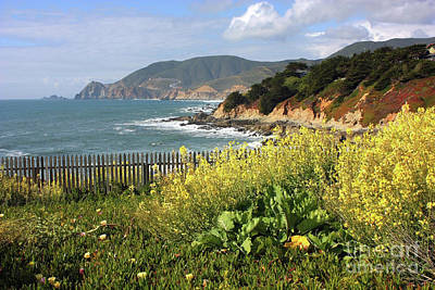 State Word Art - California Coast with Wildflowers and Fence by Carol Groenen