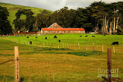 Photograph - California Coastal Farm by Adam Jewell