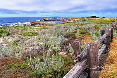 Photograph - California Coastline by Gina Savage