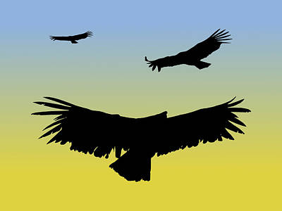 Digital Art - California Condors In Flight Silhouette At Sunrise by Marcus England