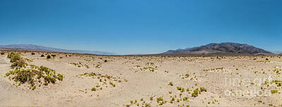 Photograph - California Desert - Death Valley Nothingness by Dan Carmichael