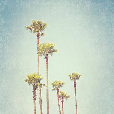 Photograph - California Dreaming - Palm Tree Print by Melanie Alexandra Price