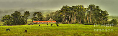 Photograph - California Farm Country by Adam Jewell