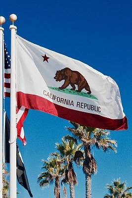 Photograph - California Flag by Carol Tsiatsios