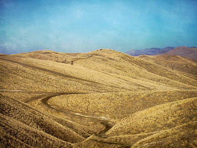 Photograph - California Gold by Mary Lee Dereske