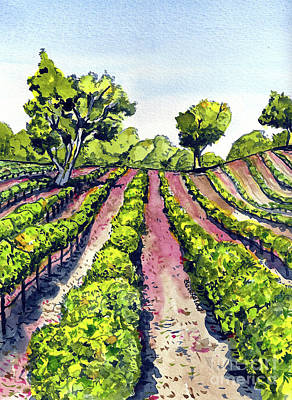 Painting - California Grape Vineyard by Terry Banderas