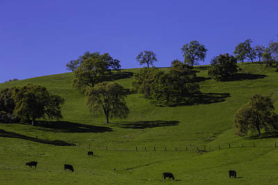 California Green Hillside Print by Garry Gay