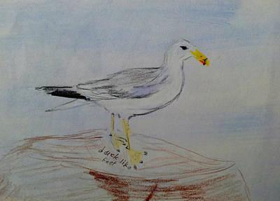 Wall Art - Painting - California Gull by Helen Krummenacker