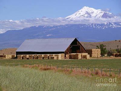Mountain View Digital Art - California Hay Barn by Methune Hively