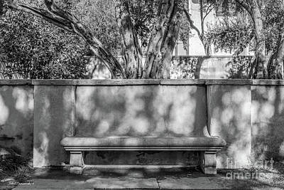 Photograph - California Institute Of Technology Bench by University Icons