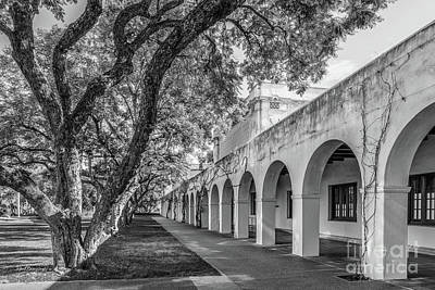 California Institute Of Technology Campus Trees Print by University Icons