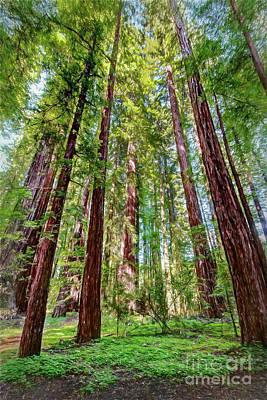 Digital Art - California Mountains -  A  Gathering Of Redwoods Ap by Dan Carmichael