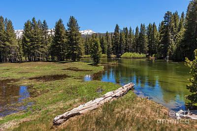 Photograph - California Mountains -  Tioga Lake On Tioga Pass by Dan Carmichael
