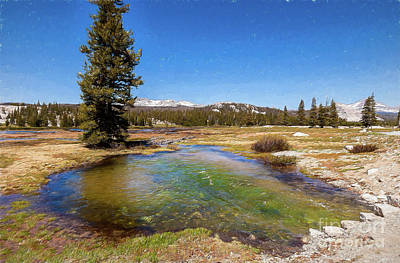 Painting - California Mountains -  Water Pond In Tuolumne Meadows Ap by Dan Carmichael