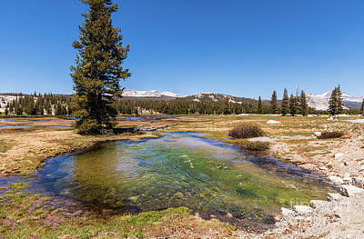 Photograph - California Mountains -  Water Pond In Tuolumne Meadows by Dan Carmichael