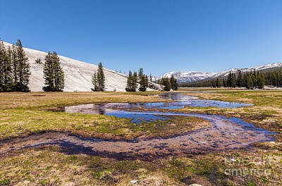 Photograph - California Mountains -  Winding Creek In Tuolumne by Dan Carmichael