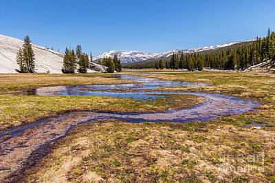 Photograph - California Mountains -  Winding Creek In Tuolumne II by Dan Carmichael