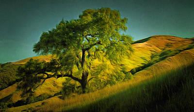 Bay Area Digital Art - California Oak by Judy Coggin