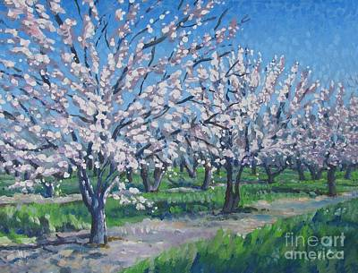 Route 49 Painting - California Orchard by Vanessa Hadady BFA MA