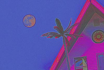 New Years - California Palms 4d by Celestial Images