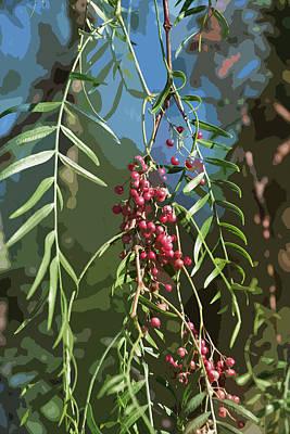 Vegetation Digital Art - California Pepper Tree Leaves Berries Abstract by Linda Brody
