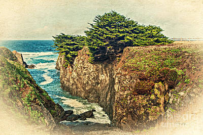 Photograph - California - Point Cabrillo Cove by Gabriele Pomykaj