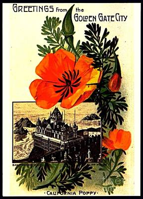 Bay Area Digital Art - California Poppy And Cliff House San Francisco 1910 by Peter Gumaer Ogden