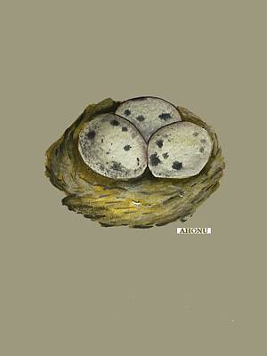 Painting - California Quail Eggs In Nest by Ahonu