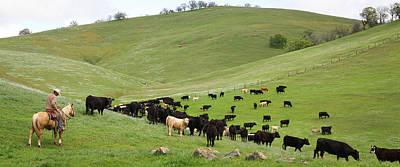 California Ranching Art Print