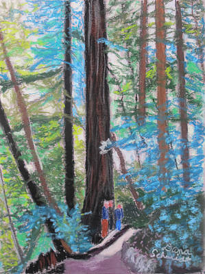 Painting - California Redwoods Near San Jose by Dana Schmidt