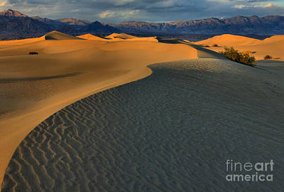 Photograph - California Sand Dunes by Adam Jewell