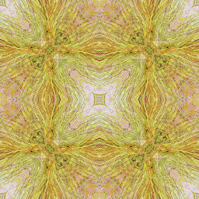 Digital Art - California Spring Oscillation Field by Kristin Doner