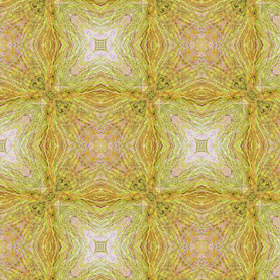 Digital Art - California Spring Oscillation Pattern by Kristin Doner