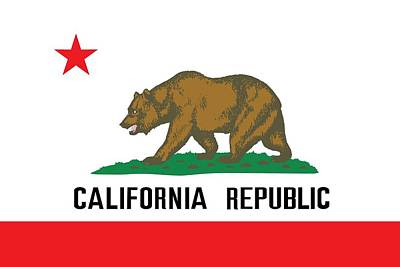 Cali Painting - California State Flag by American School