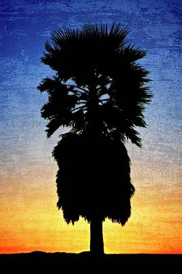 Photograph - California Sunset by Flying Z Photography by Zayne Diamond