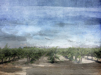 Blue Grapes Mixed Media - California Vineyard- Art By Linda Woods by Linda Woods