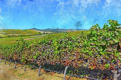 Photograph - California Vineyard In Napa Valley California by Brandon Bourdages