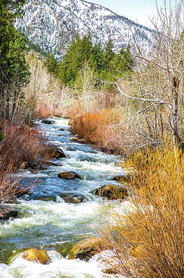 Photograph - California Wild Water by Nancy Marie Ricketts