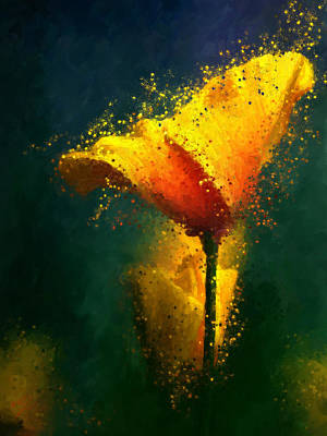 Painting - Californian Poppy by James Shepherd