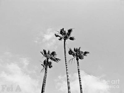 Photograph - Californian Sky by Fei Alexander