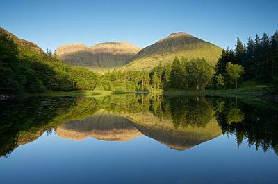 Photograph - Californian Summer In Glencoe by Stephen Taylor