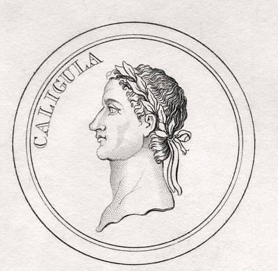 Caesar Augustus Drawing - Caligula Gaius Julius Caesar Augustus by Vintage Design Pics