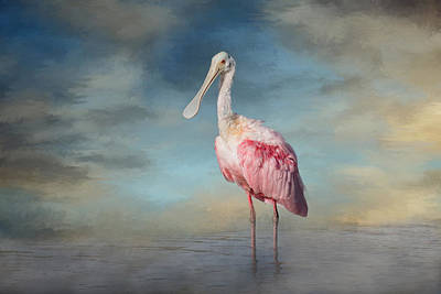 Spoonbill Wall Art - Photograph - Call Me Rosy by Kim Hojnacki