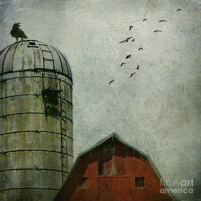 Altered Photograph - Call Of The Crow  by AJ Yoder
