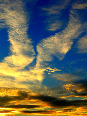 Photograph - Call To The Sky by Leela Arnet